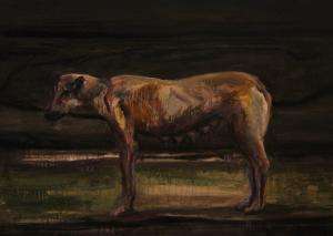 Dog 12  ghader Mansoori
