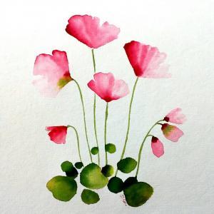 Dream lotus  Robabeh(Roya) Delkhosh