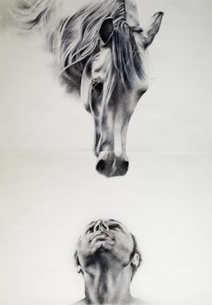 Man and the Horse  Vahid Mirzamohammadi