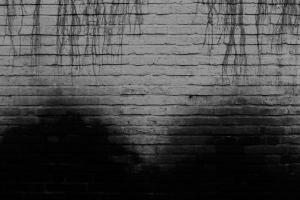 wall 02  Alireza Zangiabadi