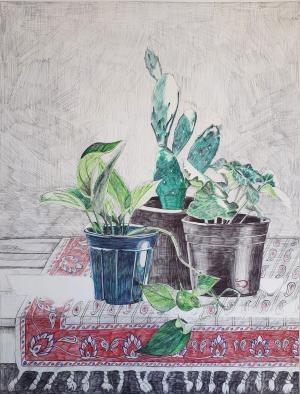 plants in light still life  Sara Pourfarzaneh