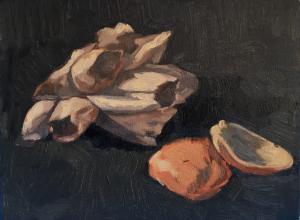 seashell-2  Shaghayegh Torabi