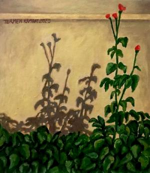 shadow5  Termeh Kamani