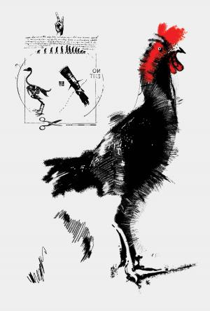 The Rooster 7  Soheil Hosseini